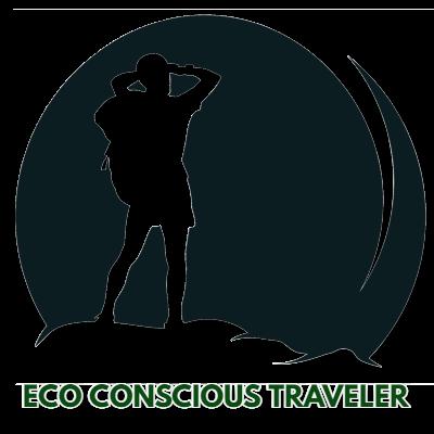 Eco-Conscious Traveler